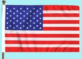Small Standing U.S. Flag